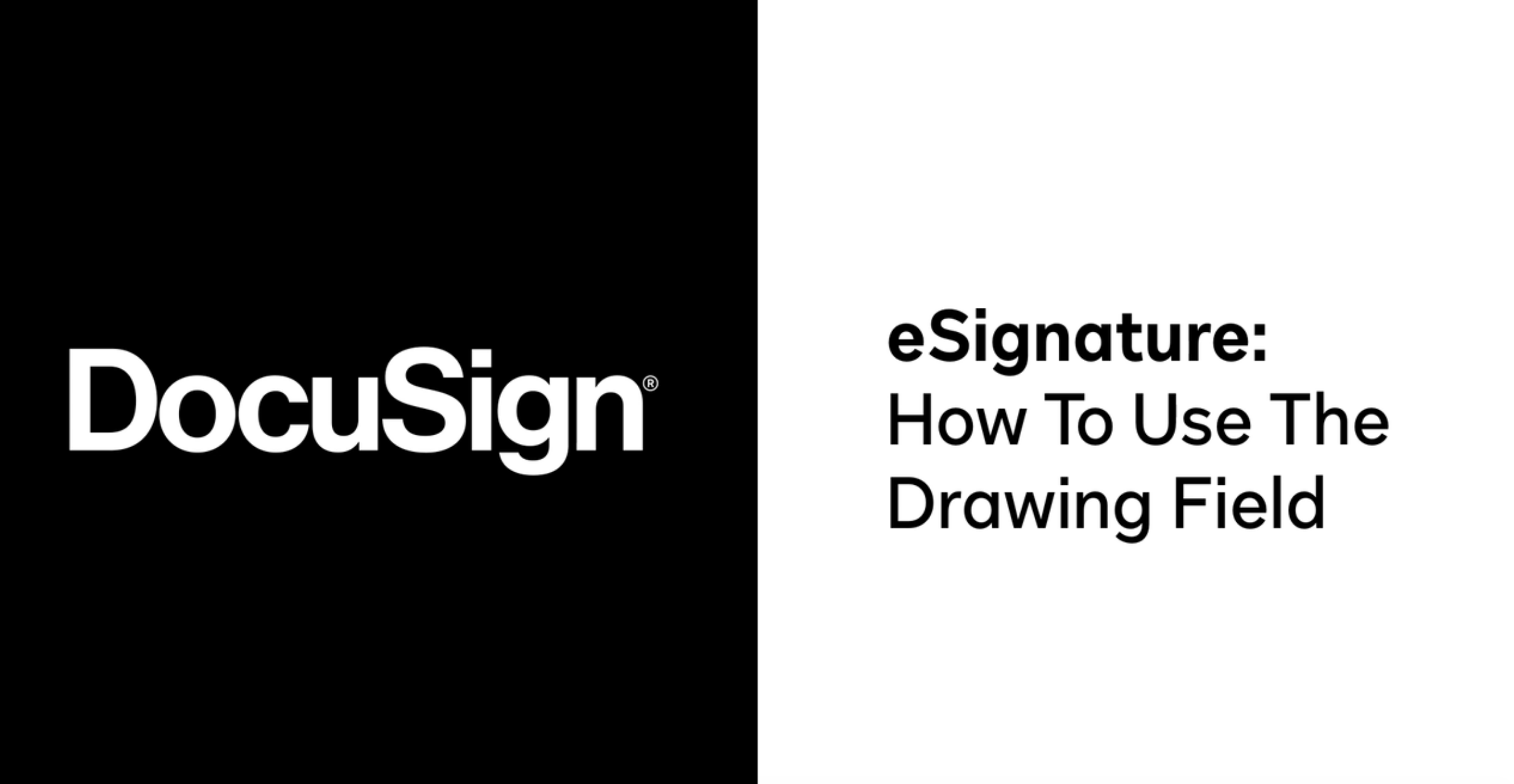 How to Use the Drawing Field